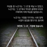 160531_화요논평_가폭목적조항_14.png