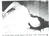1989 굴레를 벗고서 영화 제작.jpg